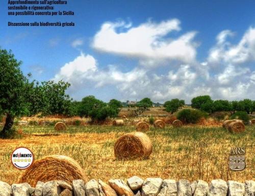 Crisi agricola e vie d'uscita: coniugare sostenibilità, produttività e gestione etica della terra