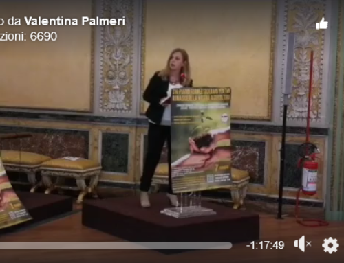 Video 7 Maggio, Sala Piersanti Mattarella Palazzo dei Normanni, Palermo
