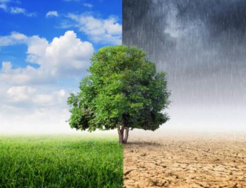 Ambiente: ministro Costa, incontra deputati M5S Sicilia su rischio desertificazione, rifiuti e bonifica coste