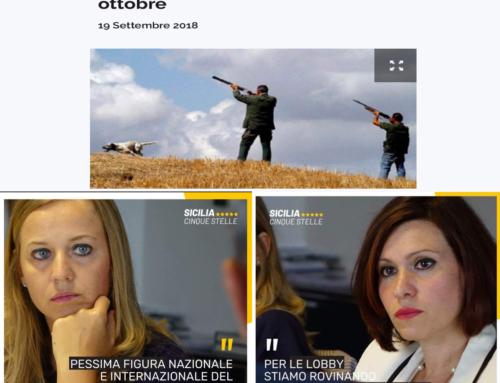 Stop alla caccia in Sicilia, il Tar accoglie il ricorso