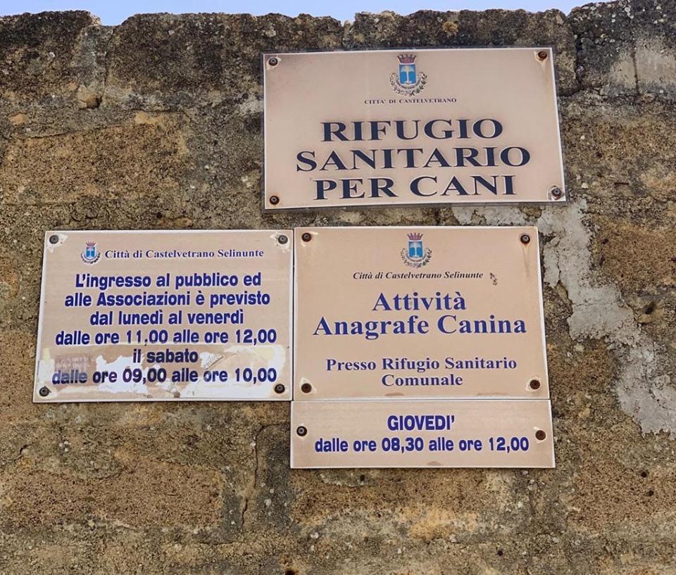 Comune di Castelvetrano. Visita al canile comunale