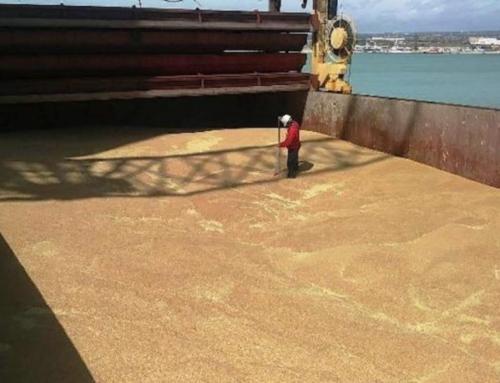 Segnalata nave con grano canadese a Pozzallo. Palmeri: approvare Ddl