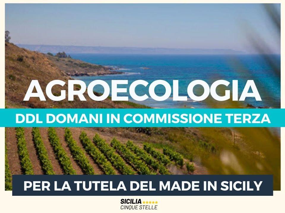 Prima firmataria del ddl su Agroecologia: per un ritorno ad una agricoltura sostenibile in Sicilia